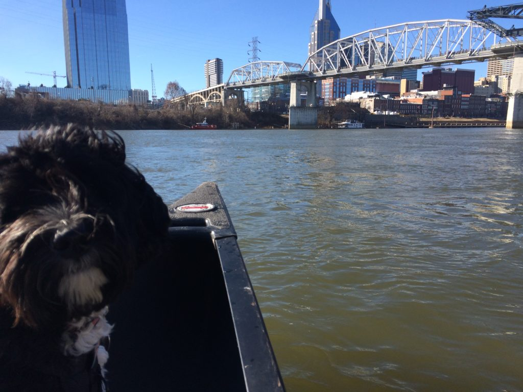 Rigby and the Nashville Skyline